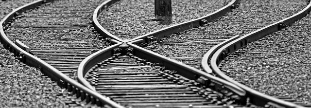 tracks split Replicated Sites Detach from MLM Software Suites