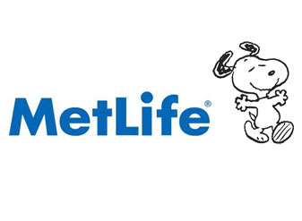 metilife review 15 Examples of Comprehensive Brand Guidelines