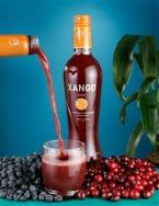 Permalink to Xango Replicated Website photo